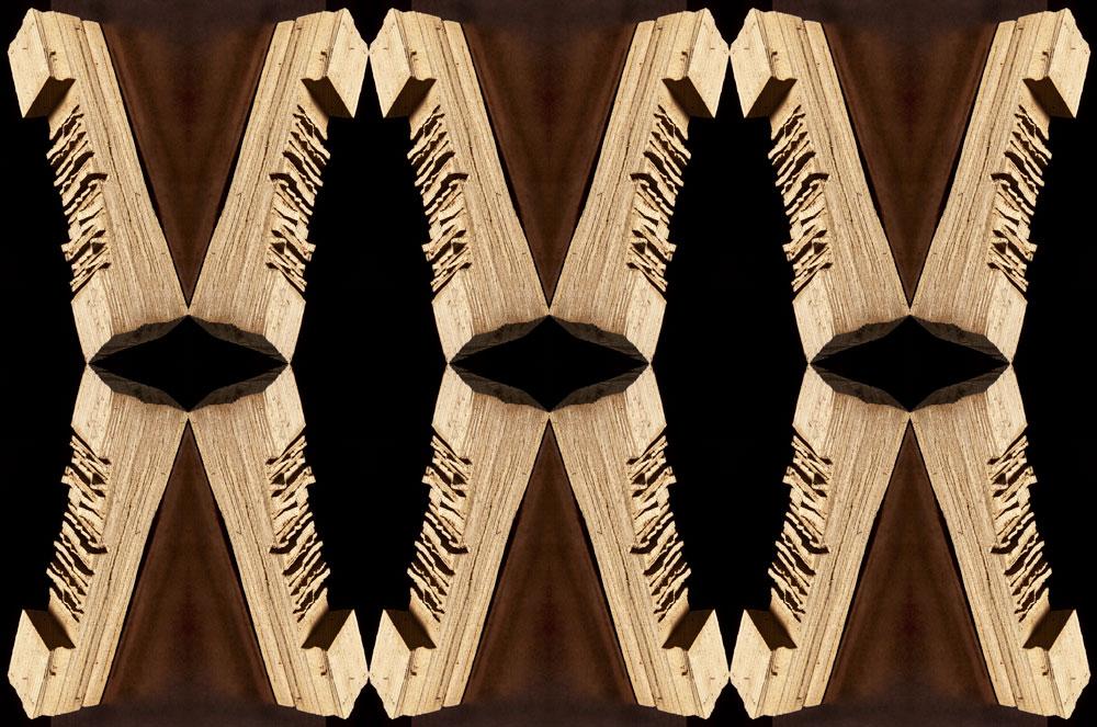 Fotografiskt verk av Vibeke Mathiesen. Trädstammar i olika former