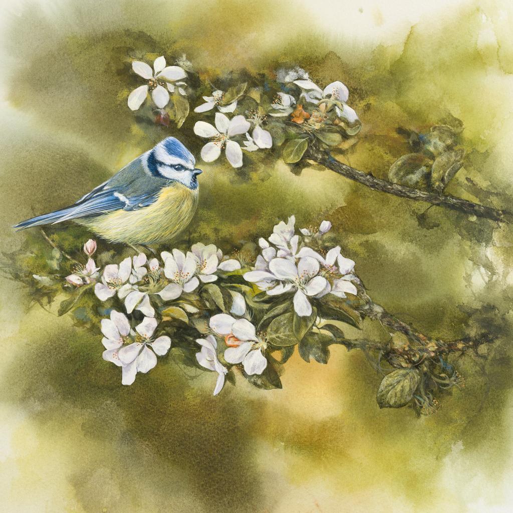 Bild på en fågel sittande på en grenbuske med vita blommor.