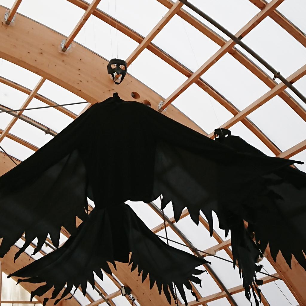 Bild på stora svarta vingar hängande i taket.